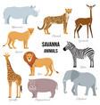 african animals of savanna elephant rhino vector image