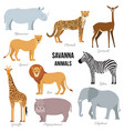 african animals of savanna elephant rhino vector image