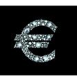 Diamond Euro Sign vector image