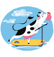 fun cow riding a scooter vector image