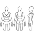 Woman mannequin slimming underwear torso vector image