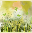 background with green grass wild herbsdandelions vector image
