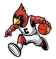 cardinal as a basketball mascot vector image