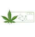 CBD-Plant Leaf Molecule vector image