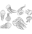 decorative image of jellyfish in cartoon style vector image