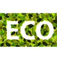 Eco word made from leafs vector image