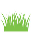 fragment of a green grass vector image