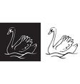 bird Swan on a black and white background vector image