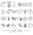 fruit theme black simple outline icons set eps10 vector image