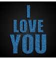 I Love You Valentine Day Blue Sequins vector image