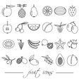 fruit theme black simple outline icons set eps10 vector image