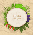 Vintage card with herbs and spices on crumpled vector image vector image