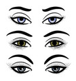 colorful female eyes and brows vector image