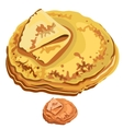 Delicious pancakes closeup on white background vector image