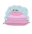 Beautiful pillows and cute cat vector image