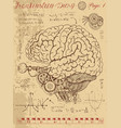 frankentsein diary with mechanical human brain vector image
