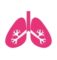 lungs organ human isolated icon vector image