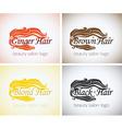 Hair salon Company identity logo design mock up vector image