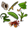 tropical plants rod crab lizard and others vector image