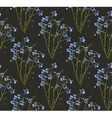 Romantic Wild Flowers on Black Seamless Pattern vector image