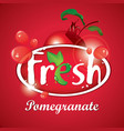 fresh pomegranate juice with fruit vector image