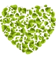 Heart made of green leaves Eco concept vector image