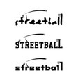 Streetball logo for the team and the cup vector image