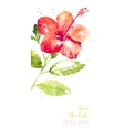 background with red watercolor hibiscus vector image vector image