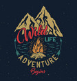 outdoor adventure vintage emblem vector image
