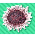 Sea Urchin vector image vector image