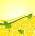 Lemon slices template vector image