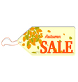 Label with text Autumn sale vector image