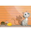 A cat and a rat with cheese vector image vector image
