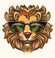 lion in glasses in cartoon style vector image