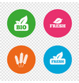 natural fresh bio food icons vector image