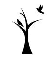 bird on tree vector image