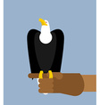 Eagle hunting Bald eagle on his arm Trained wild vector image