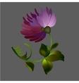 Flower element on black background vector image
