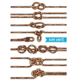 Rope Knots Set vector image