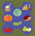 cabbage vegetabbles cherry groats semolina vector image