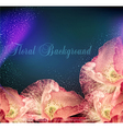 congratulation background with poppies vector image
