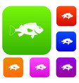 sea bass fish set color collection vector image