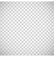 Texture the cage vector image vector image