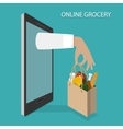 Online Grocery Ordering Delivery Concept vector image