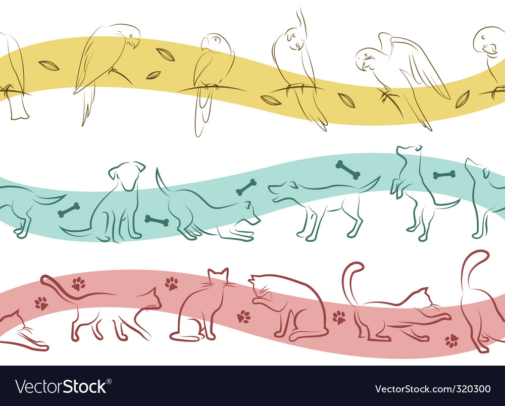 Pet pattern vector