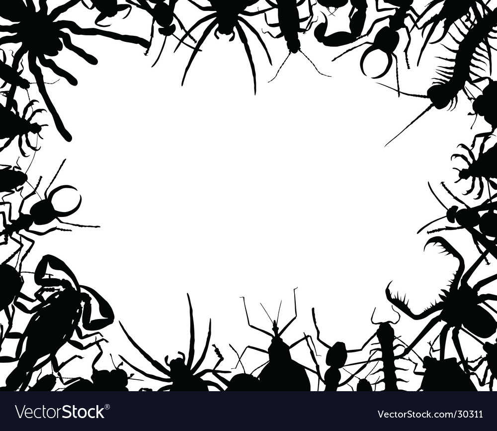 Bug frame vector