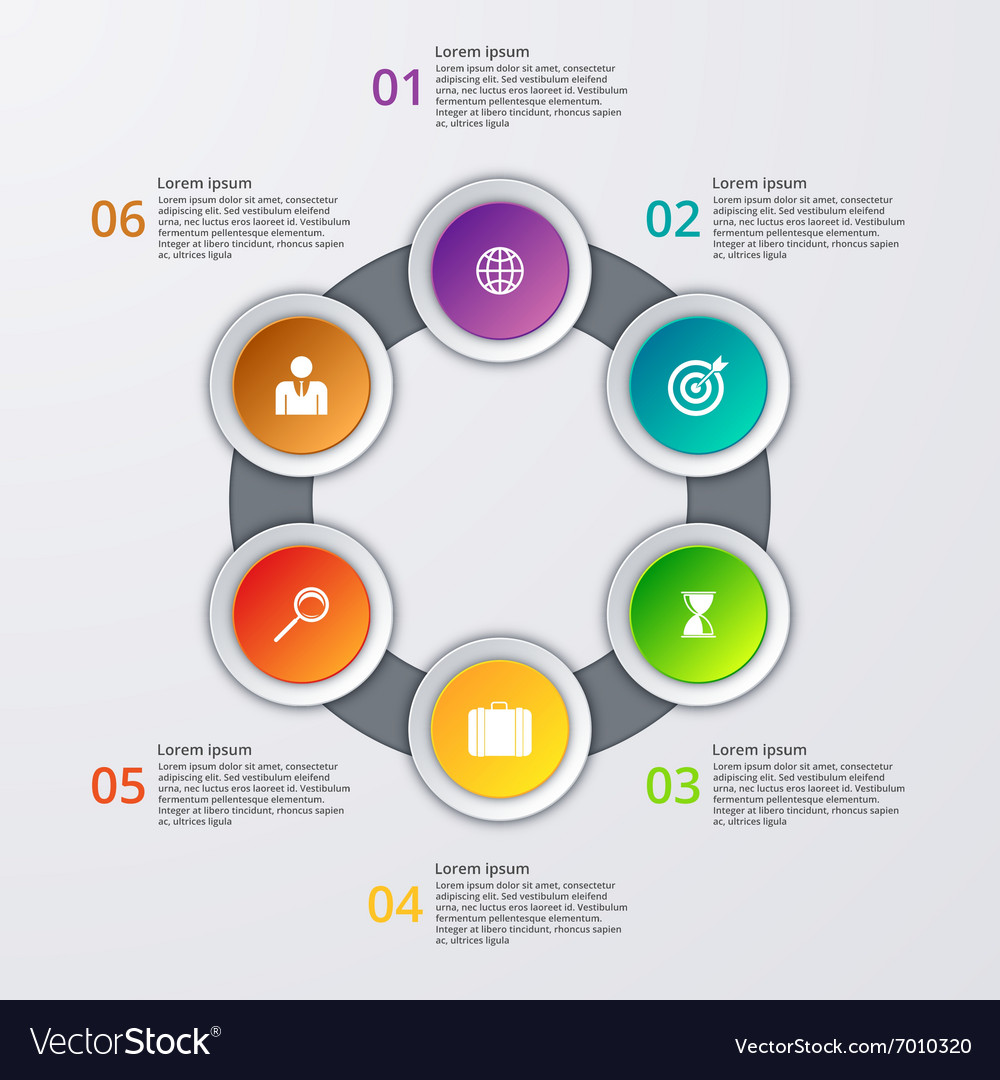 Infographics six options vector
