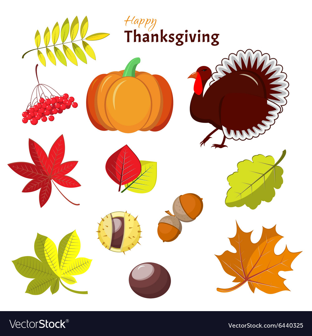 Thanksgiving and autumn decorative elements vector