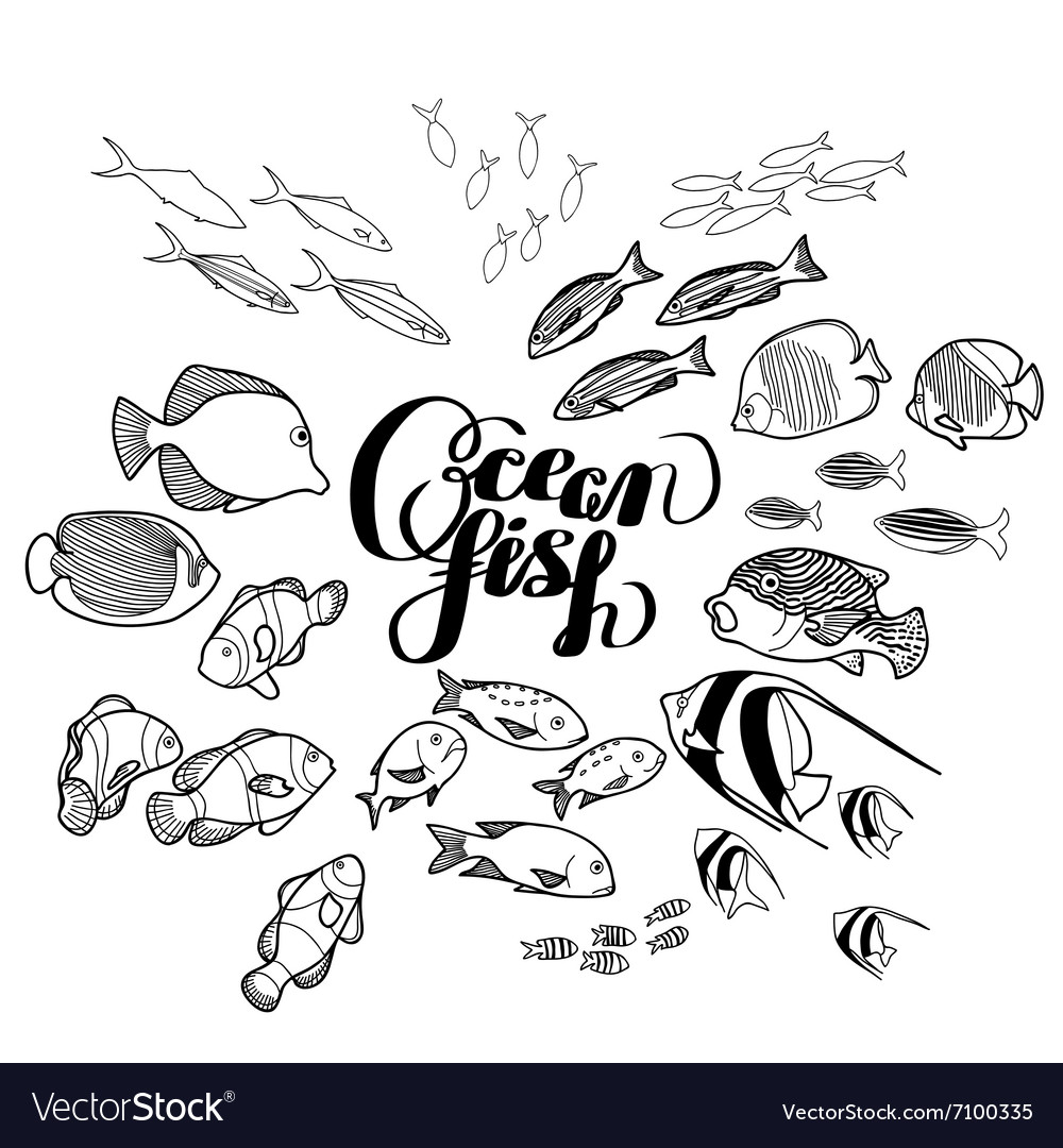 Collection of ocean fish vector
