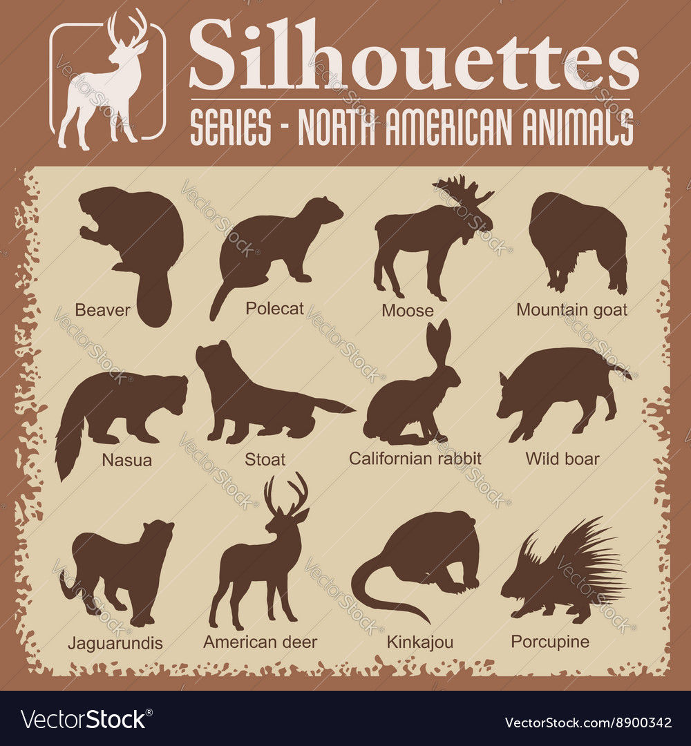 Silhouettes  north american animals vector